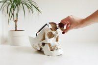 NAM-00090-skull-desk-organizer-12